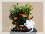 Sympathy Planter & Fresh Cut Carnations Floral Arrangement